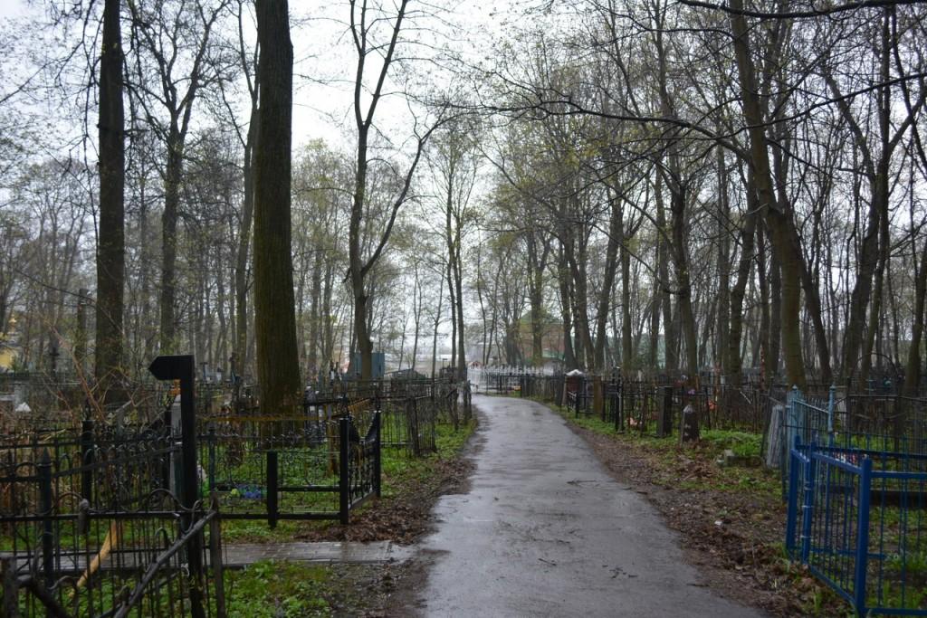 Красота и ужас Князь-Владимирского кладбища 10