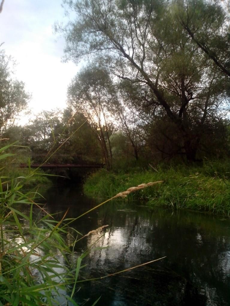 Деревня Перематкино, Александровский район 02