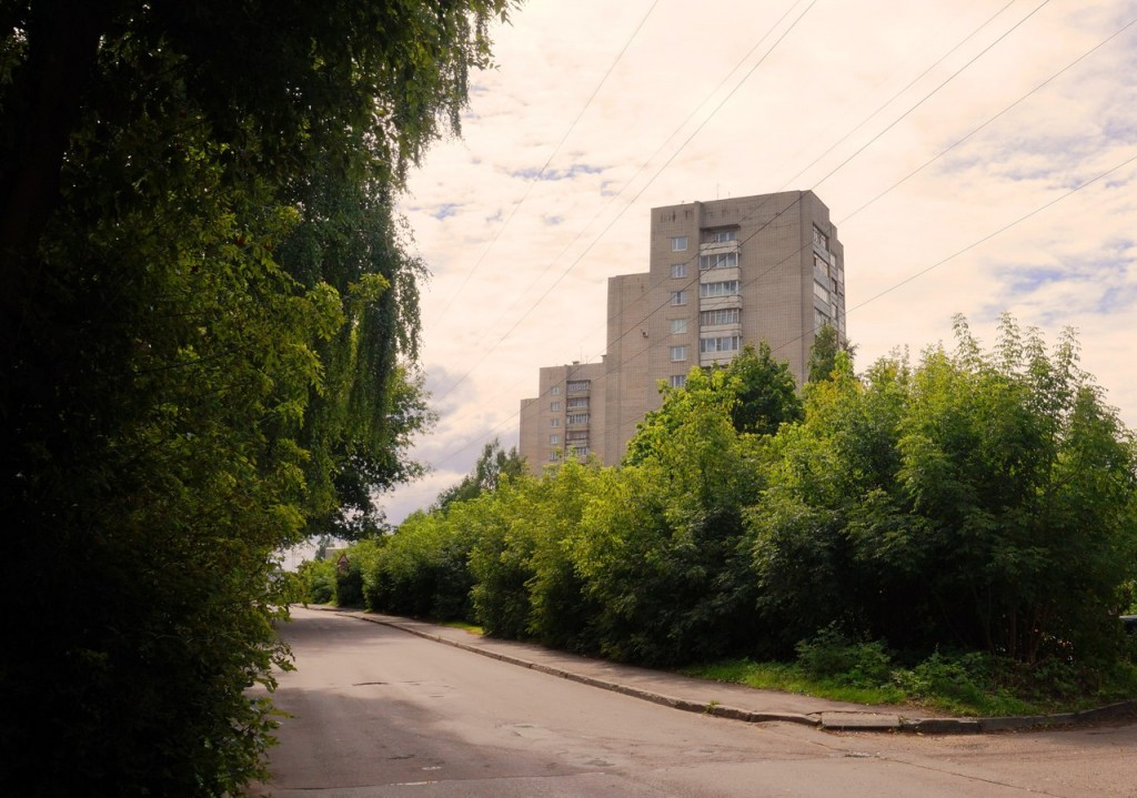Улица Завадского во Владимире