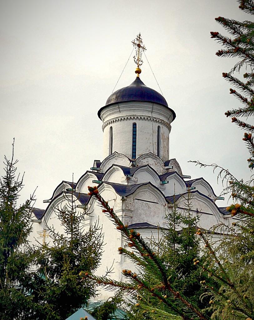 Фрески и роспись Княгинина монастыря во Владимире 02