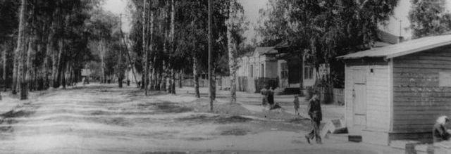 Населенные пункты Селивановского района